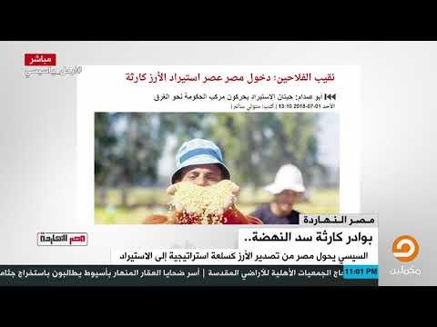 Xxx Mp4 وشهد شاهد من أهلها نقيب الفلاحين دخول مصر عصر استيراد الأرز كارثة 3gp Sex
