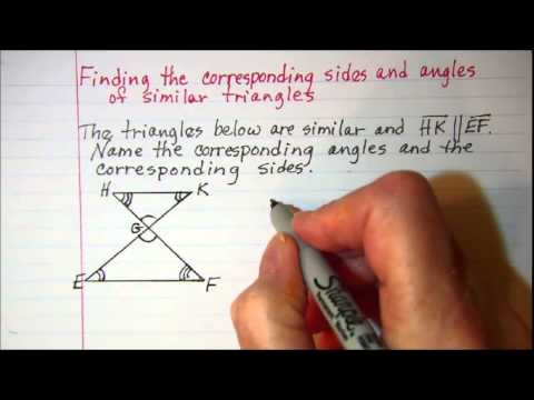Finding the corresponding sides and angles of similar triangles