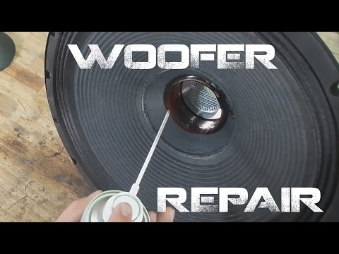 Speaker Quick Repair techniques - Easy - Strange Buzzing Sounds