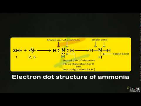 Electron dot structure of ammonia