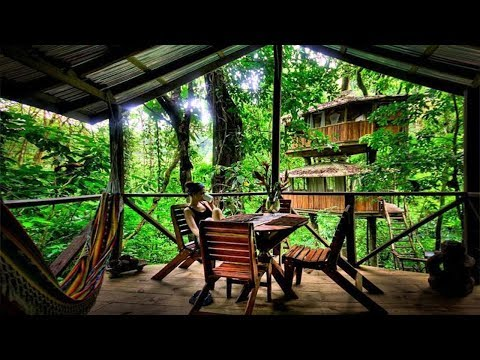 Best Treehouse Plans and Designs