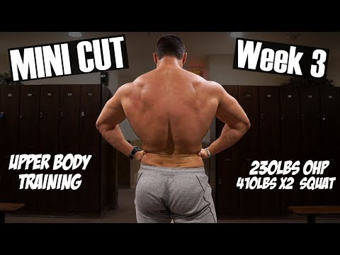 Mini Cut Update | Full Upper Body Workout | Training PR'S