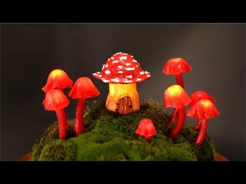 ❣DIY Miniature Fairy Garden Terrarium❣