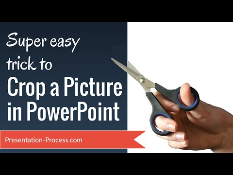 Super Easy Trick to Crop a Picture in PowerPoint