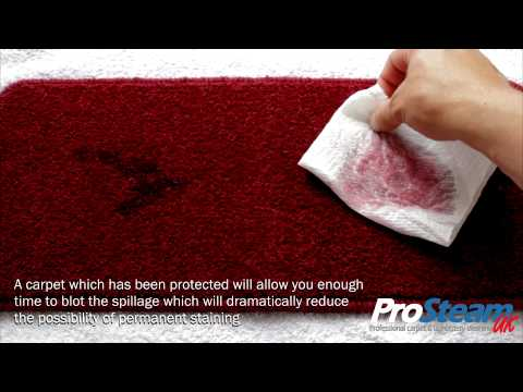 Red Wine - Stain - Removal