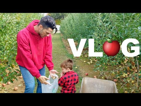 Apple Picking with My 2-Year Old Nephew!