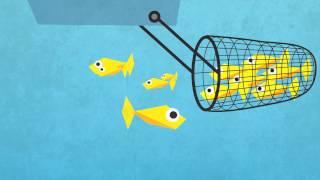 Explanimation Overfishing