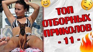 Download ПРИКОЛЫ 2019 Топ Отборных Приколов #11 │Ржака Юмор Угар Joke Humor│ Video