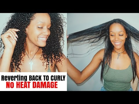 Prevent Heat Damage | Reverting Back to Curly