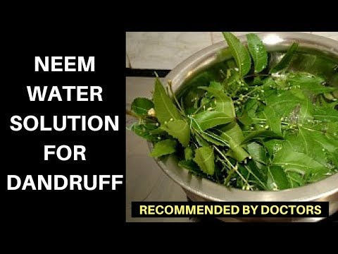 Cure Dandruff with Moringa aka Neem Leaves with only 2 ingredients in a week