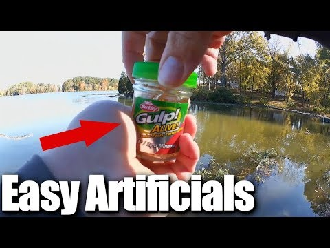 How To Catch Bluegills and Bass in Fall - Easy Fishing for Beginners
