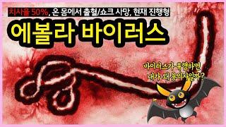 법정감염병 1급 에볼라 바이러스의 정체! 왜 박쥐가 용의자일까?