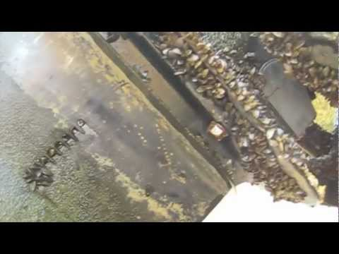 Boat Hull Acid Washing by Bricks Boatworks, Inc.