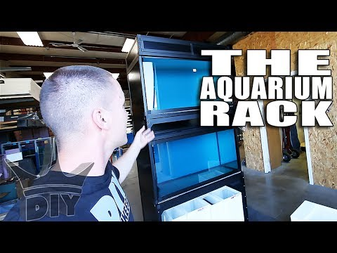 THE AQUARIUM RACKS!!!
