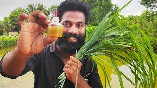 How To Make Natural Mosquito Repellent Liquid | കൊതുകിനെ ഓടിക്കാൻ ഇതിലും നല്ല വഴി ഇല്ല | M4 Tech |