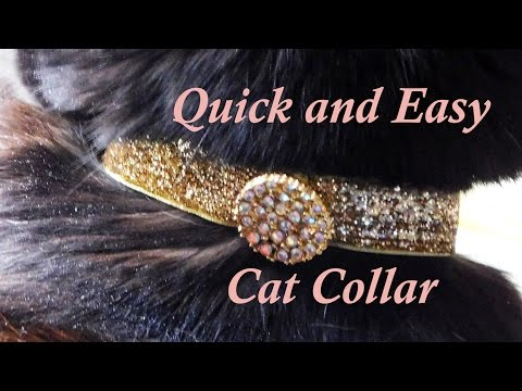 DIY Easy and Quick Cat Collars You Can Make for Your Kitty