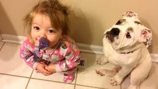 HUMAN & ANIMAL BABIES are the best COMBINATION! - You CAN NOT AVOID LAUGHING!