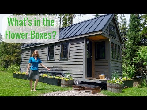 Life in a Tiny House called Fy Nyth - What's in the Flower Boxes?