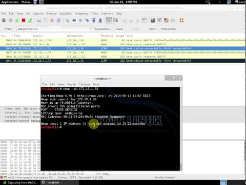 nmap udp (-sU) scan. Open and closed port