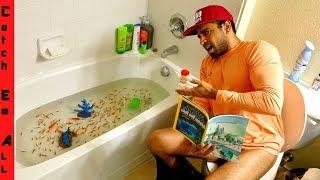 FISH BATHTUB: Explained!