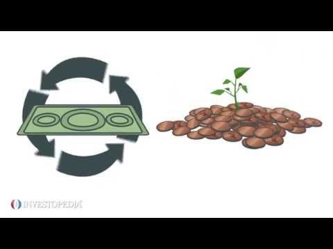What is Velocity of Money ?