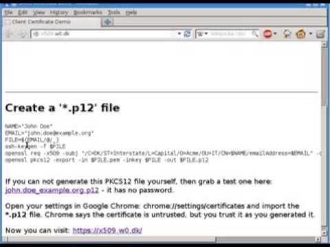 Client Certificate Authentication Login Demo
