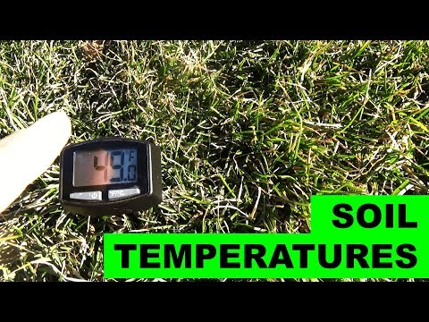 Soil Temperatures - When to seed, when to fertilize, when to use pre-emergent