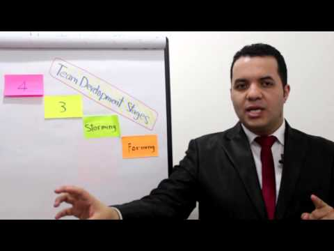 4 Stages to Build Effective Team-Ahmed Magdy