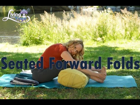 How to Do Seated Forward Fold : Yoga