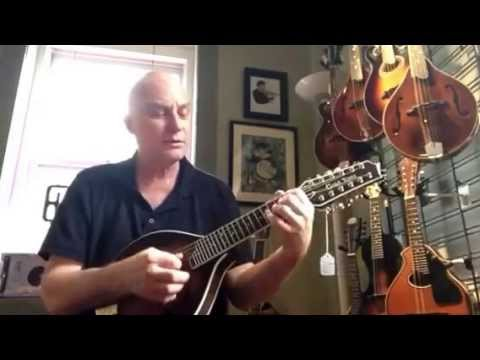 GoldTone GM-12 12 string mandolin