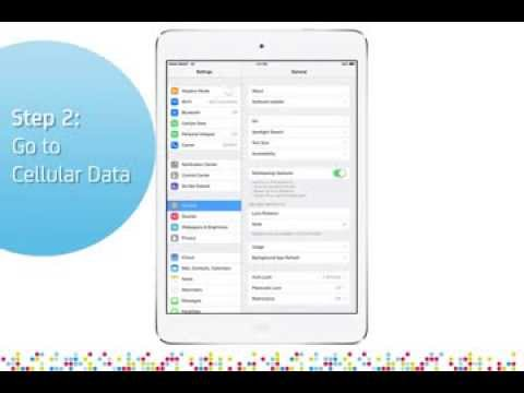 iPad Air: Turn on/off data roaming