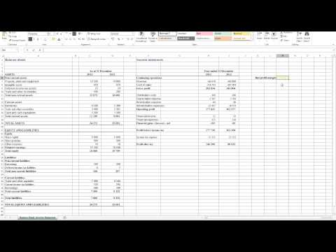 Calculating Net Profit Margin in Excel