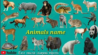Wild animals names (जंगली जानवरों का नाम) Pictur And Sounds | wild animals names hindi