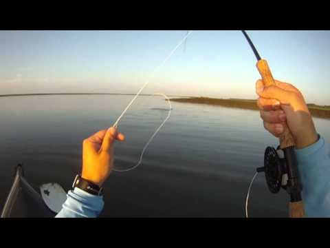 Fly Fishing low tide for Red Fish