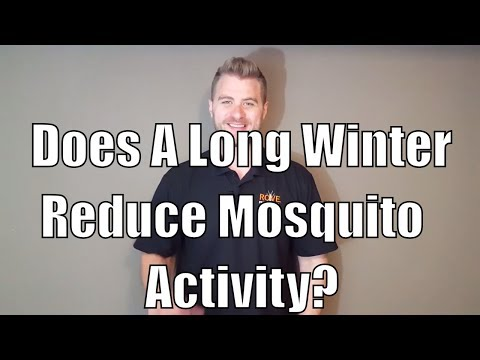 Does a long winter reduce mosquito numbers?