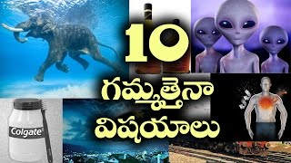 10 Most Intresting facts You Should Know || unknown facts telugu