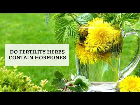 Do fertility herbs contain hormones?
