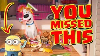 Everything You Missed in Secret Life of Pets
