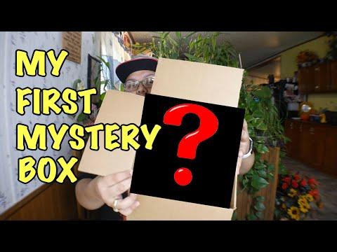 $50 eBay Mystery Box (I Got Something Really Good)
