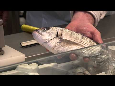 Guide to buying and cooking fresh seafood in Florence