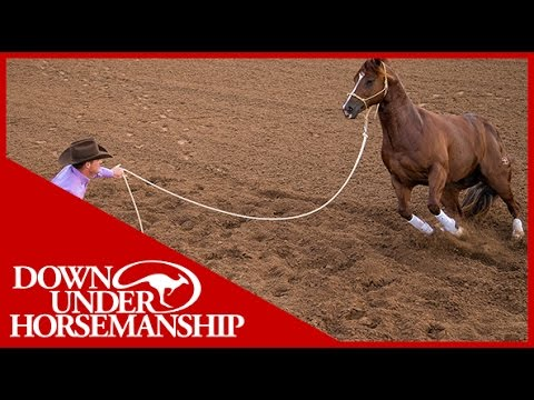 Clinton Anderson: Why Use a 14-Foot Lead Rope - Downunder Horsemanship