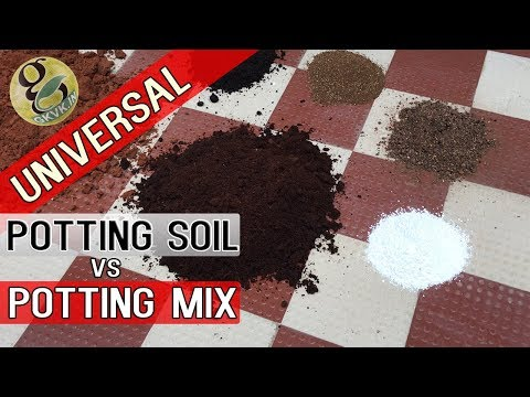 UNIVERSAL Potting Soil vs Potting Mix Differences | How to Make Best Potting Mixture for Plants