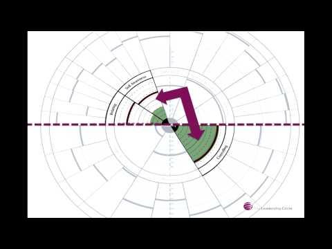 The Leadership Circle Profile Test Drive