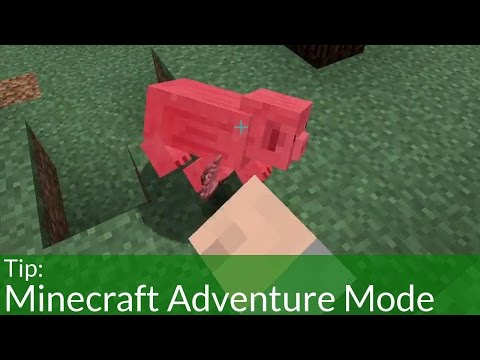 Minecraft Adventure (Game Mode) How To