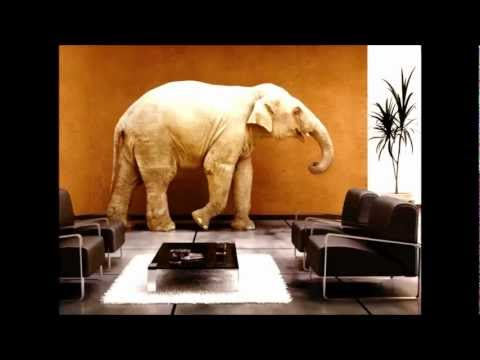 The Elephant in the Living Room - Alcoholism. Al-Anon Interview with Alexa Smith.mp4
