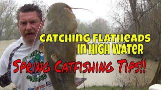 catfishing my catfish Videos - 9tube tv