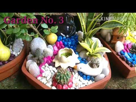 Make a Table Top Garden/ Miniature garden  at your Home.