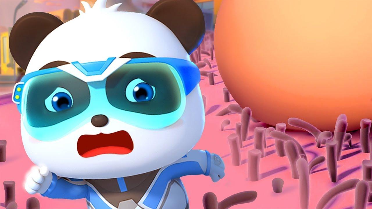 Penyelamatan Super Bayi Panda | Kumpulan Film Bayi Panda | BabyBus Bahasa Indonesia