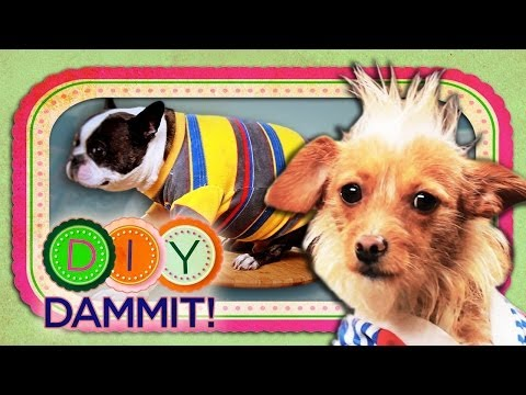 HOW-TO Make Dog Shirts - DIY DAMMIT!