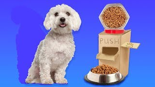 22 CUTE PET HACKS AND CRAFTS